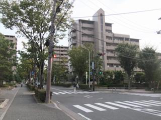 緑地公園駅から当医院まで18