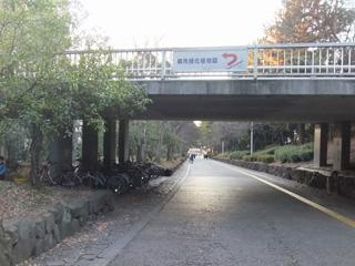 緑地公園駅から当医院まで5