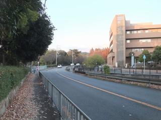 緑地公園駅から当医院まで8