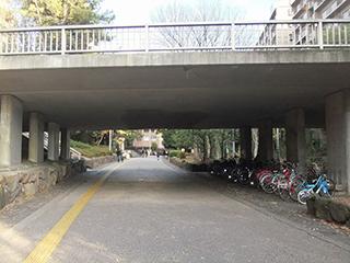 緑地公園駅から当医院まで12